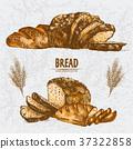 Digital color vector detailed line art golden 37322858