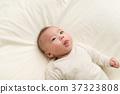嬰兒 寶寶 寶貝 37323808