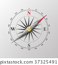 Compass Wind Rose Vector. Isolated Illustration 37325491
