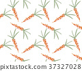 Background image of orange carrot with green leave 37327028