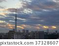 tokyo, taito ward, ueno 37328607