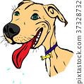 cute painted cartoon American pit bull 37328732