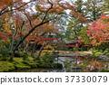 風景 日本 遊覽 37330079