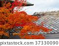 風景 日本 遊覽 37330090