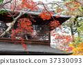 風景 日本 遊覽 37330093