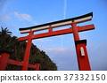 japan, miyazaki prefecture, miyazaki city 37332150