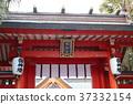 japan, miyazaki prefecture, miyazaki city 37332154