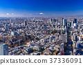 วิวเมือง,ท้องฟ้า,ภูเขาฟูจิ 37336091