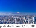 วิวเมือง,ภูเขาฟูจิ,ภูเขาไฟฟูจิ 37336101