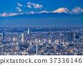 วิวเมือง,ภูเขาฟูจิ,ภูเขาไฟฟูจิ 37336146
