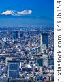 วิวเมือง,ท้องฟ้า,ภูเขาฟูจิ 37336154