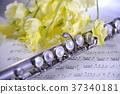 플루트 꽃다발 37340181