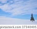 설원, 겨울, 언덕 37340405
