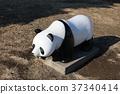 panda, pandas, objet 37340414