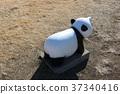 panda, pandas, objet 37340416