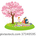 cherry-blossom, viewing, spring 37340595
