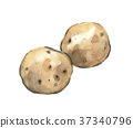 potatoes, aquarelle, watercolor 37340796