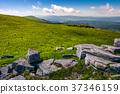 grassy alpine meadow of Polonina Runa 37346159