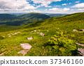 grassy slopes of Carpathian mountains 37346160