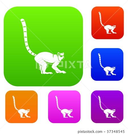 Lemur monkey set color collection 37348545