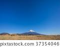Fuji in winter 37354046