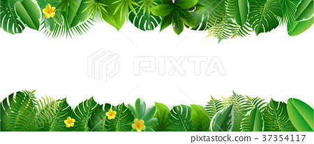 Bright tropical background with jungle plants. 37354117