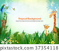 background, animal, animals 37354118