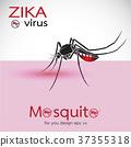Mosquito Sucking Blood On Skin. Spread of zika. 37355318