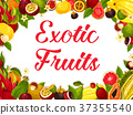 fruit exotic tropical 37355540