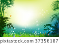 Green grass on background grass palm 37356187