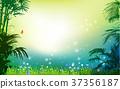 Green grass on background grass palm 37356187