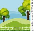 場景 綠色 綠 37357375