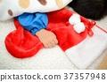 圣诞节 耶诞 圣诞 37357948