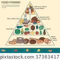 食物 食品 金字塔 37363417