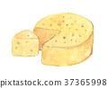 奶酪 37365998