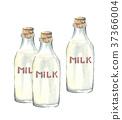 3瓶牛奶 37366004