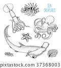 vector, creature, fish 37368003