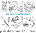 seafood, food, vector 37368044