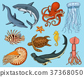 Fishes set or sea creature nautilus pompilius 37368050