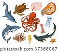 Fishes set or sea creature nautilus pompilius 37368067
