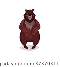 cartoon, animal, bear 37370311