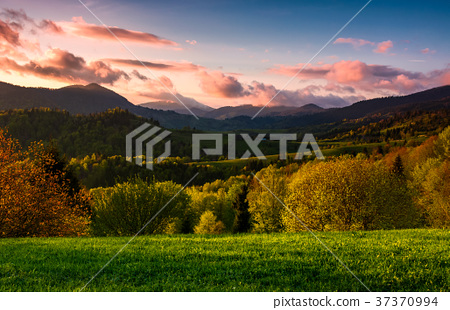 forested hill at cloudy sunset in springtime 37370994