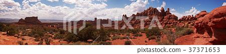 Desert panorama 37371653