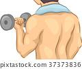 Man Muscle Weight Lift 37373836