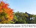 일본 삼경, 단풍과 고다이 37374070