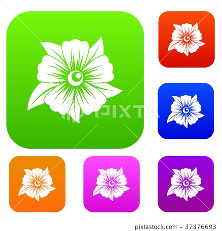 Flower set color collection 37376693
