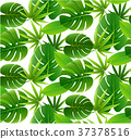 Tropical leaves seamless pattern. Floral jungle. 37378516