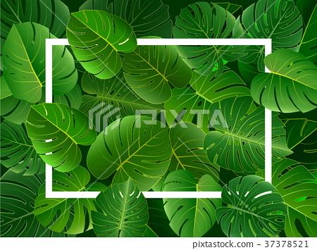 Tropical island Rectangular frame of beautiful. 37378521