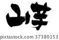 calligraphy writing, calligraphy, calligraphic 37380153