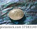 金币 钱 钱币 37383140
